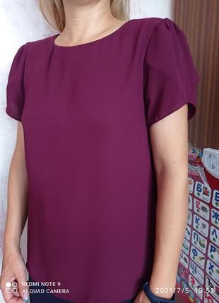 Блуза( блузка)