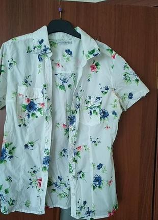 Стильная, нежная рубашка с летним принтом