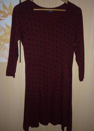 Платье туника большого  размера 521