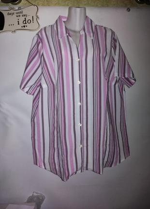 22р блуза рубашка в полоску с биркой