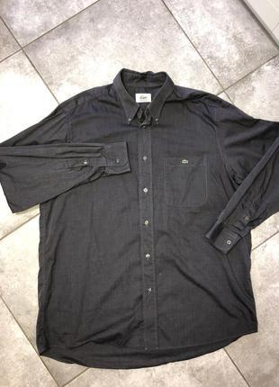 Lacoste рубашка новая