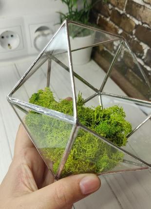 Скляний флораріум ікосаедр