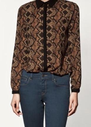 Шифоновая блуза в принт питон zara basic