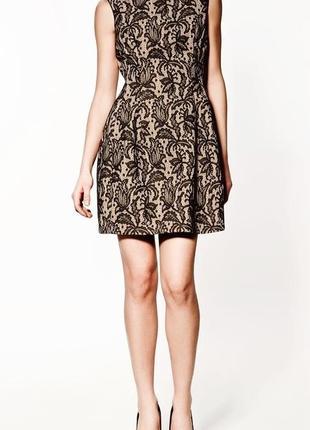 Zara kate middleton новое кружевное платье цветочное / большая распродажа!