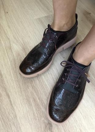 Кожаные спортивные туфли под рептилию
