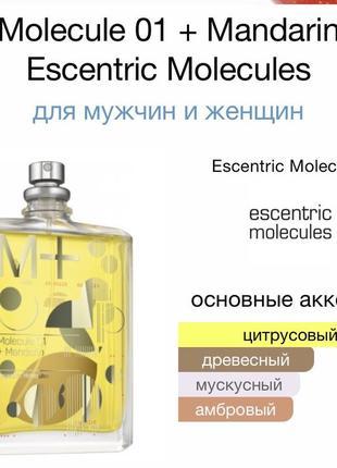 Escentric molecules molecule 01 + mandarin2 фото