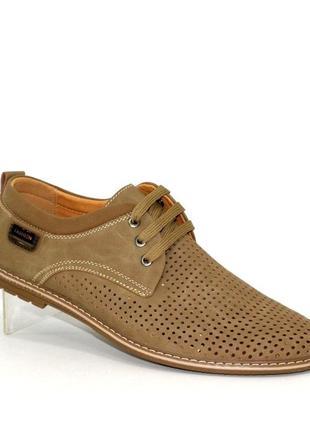 Мужские летние туфли большие размеры fd96-6k