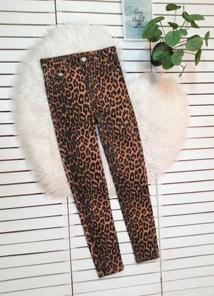 Леопардовые джинсы скинни zara p. xs