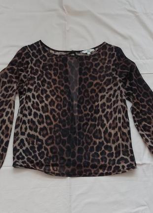 Шифоновая летняя блузка, кофта с открытой спинкой