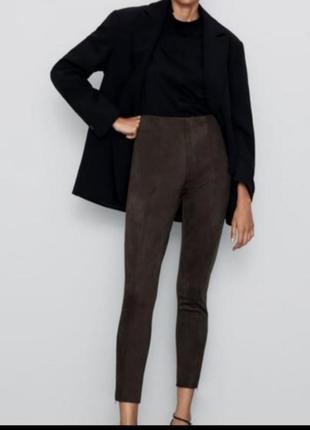 Шикарные брюки / леггинсы / лосины zar