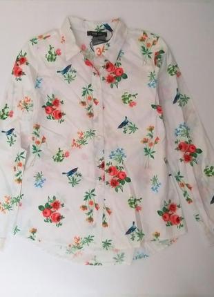 Блуза рубашка женская с длинным рукавом primark