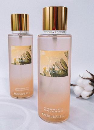 Victoria's secret mist виктория сикрет мист парфюмированный спрей. oasis blooms