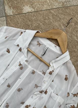 Короткая рубашка с котиками