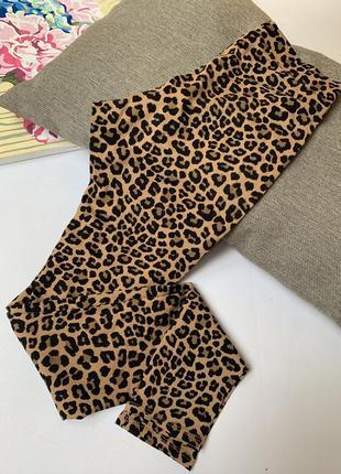Лосины леопардовые h&m