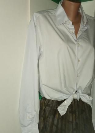 Базовая рубашка 100% хлопок 48 50рр