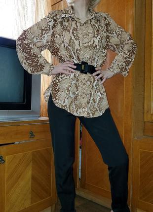Блуза змеиный животный принт h&m