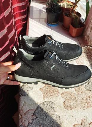Кожаные туфли, ботинки fretz