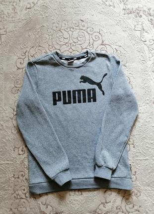 Свитшот puma 2019