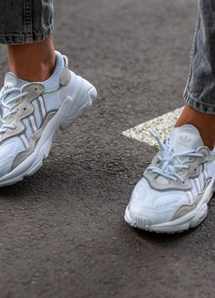 Adidas ozvego white\grey кроссовки женские