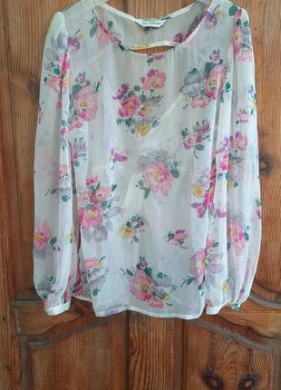 Нежная блуза