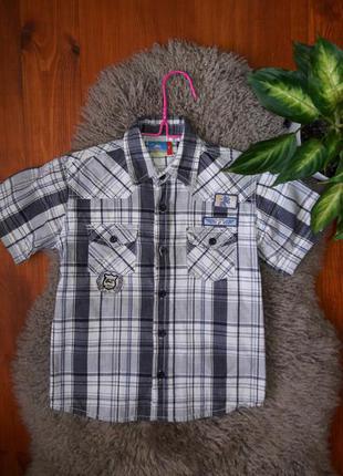 Рубашка topolino 122 см