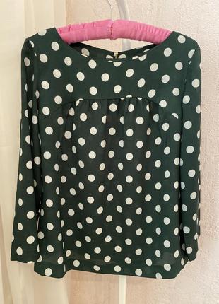 Блуза в горох шифоновая принт mango asos h&m