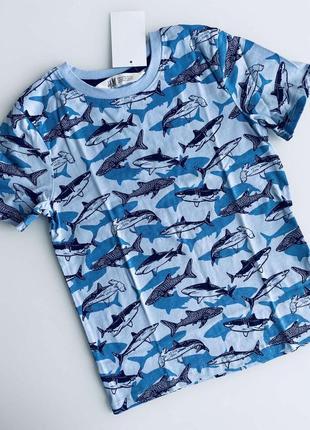 H&m футболка с акулами на 2-4 годика