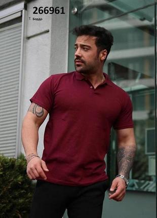 Чоловіча футболка поло (тр-266961)