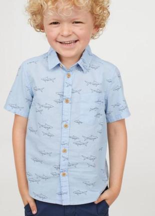 Легкая летняя рубашка h&m на 3-4 года