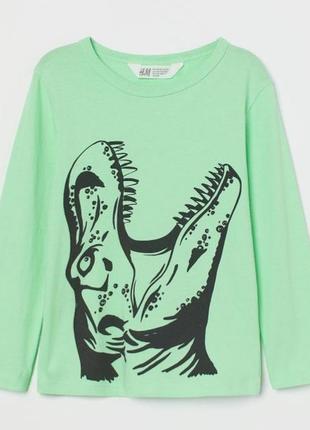 Яркий реглан  h&m   динозавром