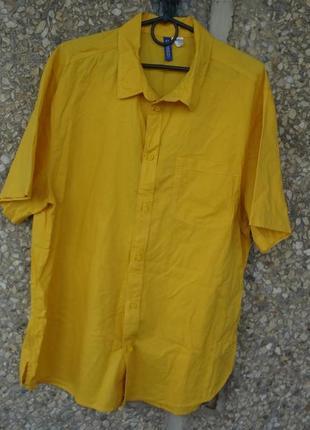 Рубашка с коротким рукавом (тенниска) h&m желтая