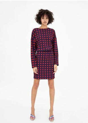 Платье zara trafaluc темно-синее в красный горошек с длинным рукавом