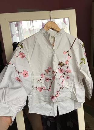 Блуза / сорочка