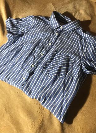 Рубашка с коротким рукавом, рубашка, сорочка з коротким рукавом, сорочка, блуза