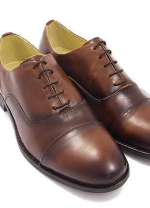 Мужские туфли shoe the bear 8259 / размер: 43