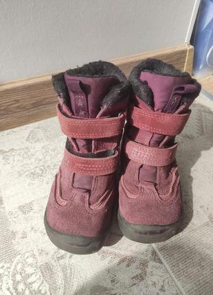 Демисезонные ботинки ecco
