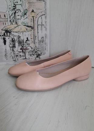 Туфлі ecco 🌿ecco 🌿