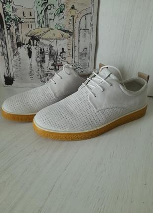 Туфлі 🌿ecco 🌿