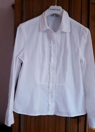Шикарна брендова блуза ,в складі котон,еластан.