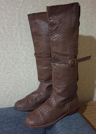 Сапоги сапожки кожа кожаные питон