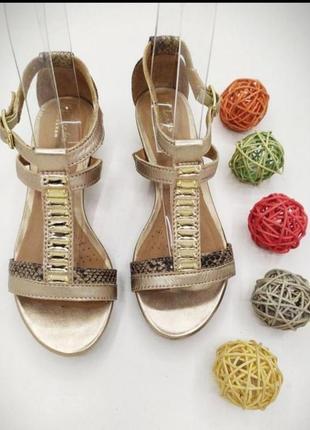 Кожаные босоножки сандали clarks