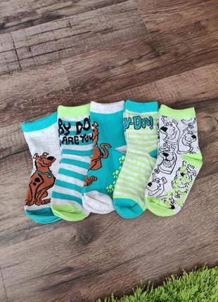 Носки шкарпетки 5 пар 25/27 розмір