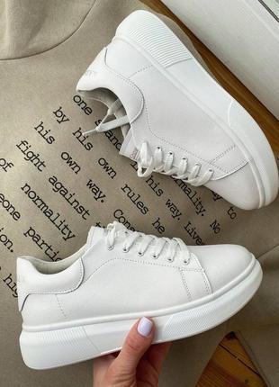 Кожа шкіра кросівки
