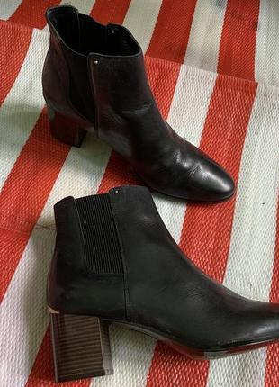 Стильные красивые кожаные ботинки сапоги челси calvin klein оригинал