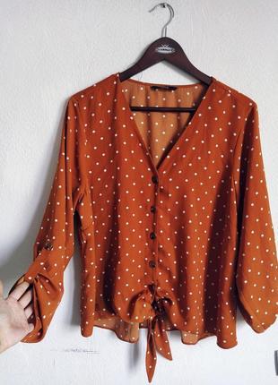 Актуальная блуза в горох на пуговках