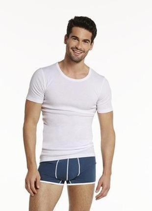 Мужская базовая футболка livergy в рубчик