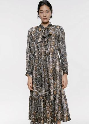 Zara миди платье-рубашка с воланом в змеиный принт