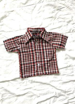 Рубашка в клетку с коротким рукавом летняя