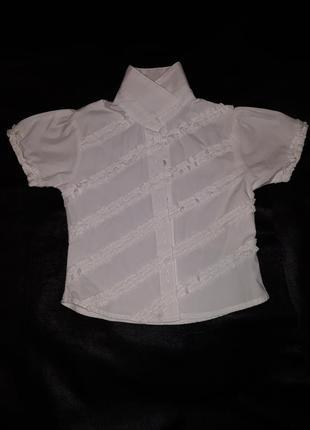 Рубашка блузка кофта одежда mini mode