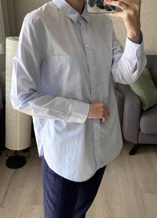 Базовая хлопковая рубашка h&m